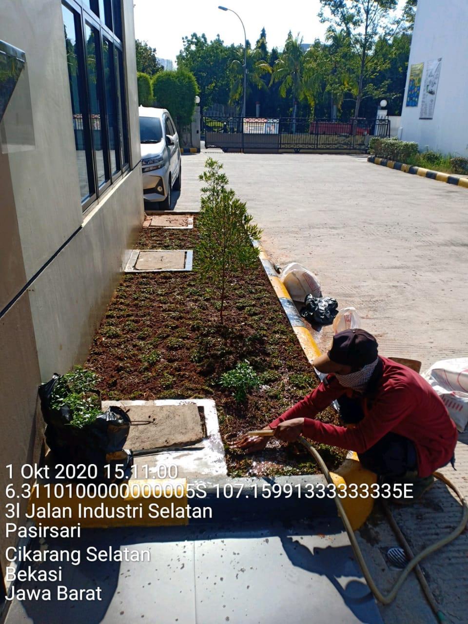 perusahaan jasa gardener